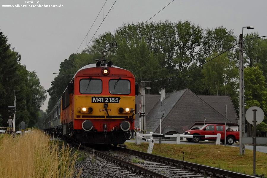 V41 2185