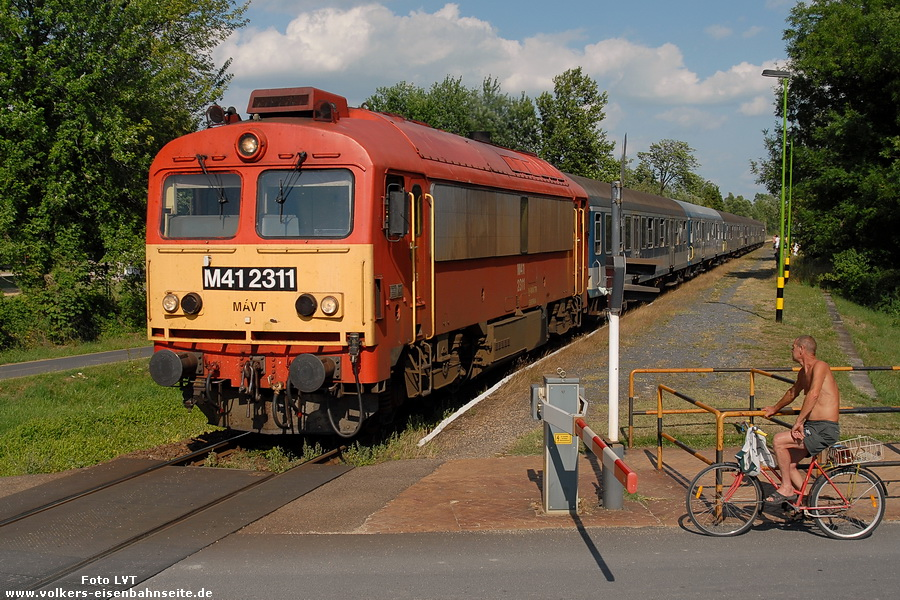 M41 2311
